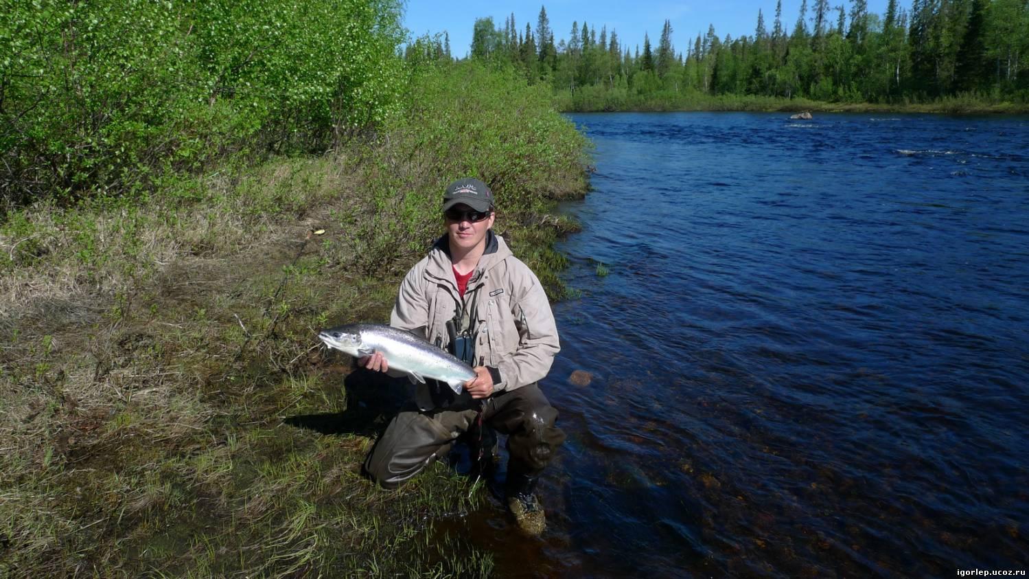 охота и рыбалка в мурманской области видео