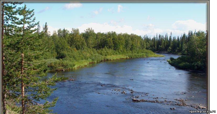 видео рыбалка озеро река